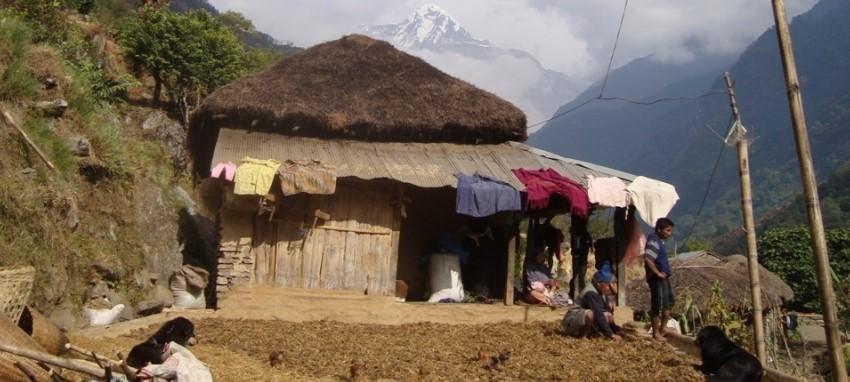 Randonnée au camp de base de l'Annapurna - Trekking au camp de base de l'Annapurna