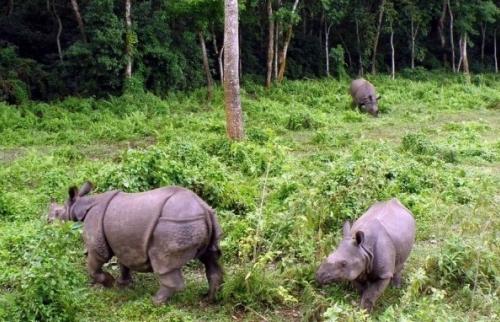 Nouveaux frais d'inscription dans les zones de conservation pour l'année 2015