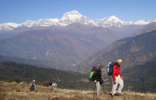 Randonnée au camp de base de l'Annapurna