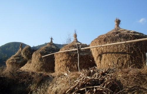 Visite du village de Chitlang