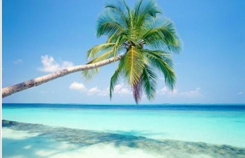 Поездка на север Индии и к пляжам Гоа