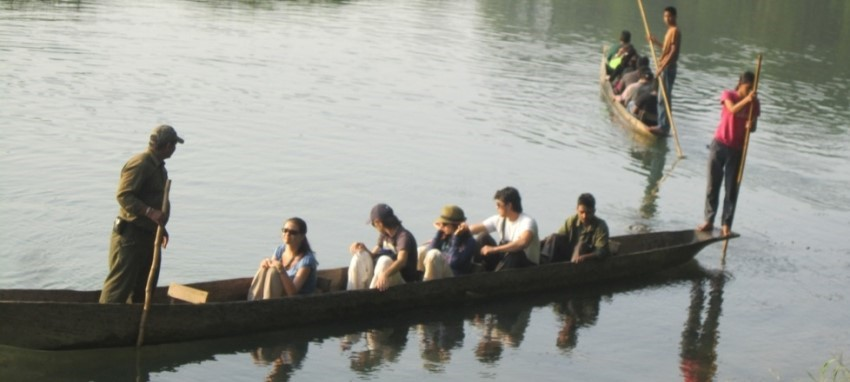 Jungle Safari in Chitwan - Jungle Safari in Chitwan